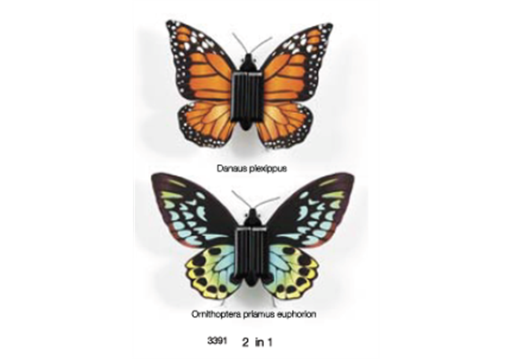 2in1 Schmetterling Bausatz