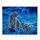Aurora Family, 40x50cm LED Crystal Art Kit