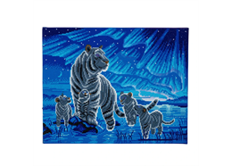 Aurora Family, 40x50cm LED Crystal Art Kit