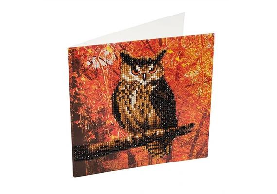 Autumn Owl, 18x18cm Crystal Art Card
