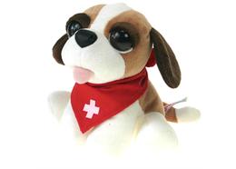 Bernhardiner mit Grossen Augen und Schweizer Schal