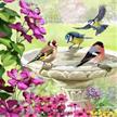 Birds, 18x18cm Crystal Art Card | Bild 4