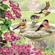Birds, 18x18cm Crystal Art Card | Bild 5