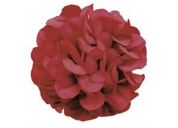 Burgundy, Cute Camelias Forever Flowerz - Makes 30