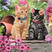 Cat Friends, 18x18cm Crystal Art Card | Bild 4