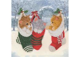 Christmas Kittens, 18x18cm Crystal Art Card