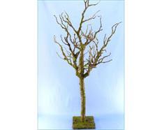 Deko-Ästebaum grün-braun-bemoost H95 B35cm