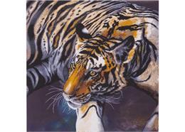 Der Tiger, Bild 70x70cm Crystal Art Kit