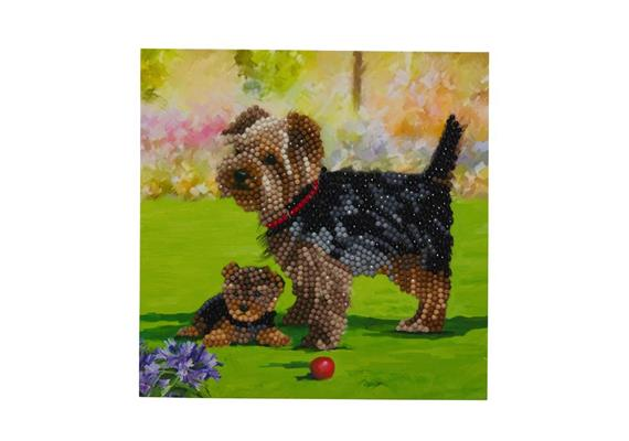 Dogs, 18x18cm Crystal Art Card