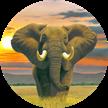 Elephant, Crystal Art Clock | Bild 4