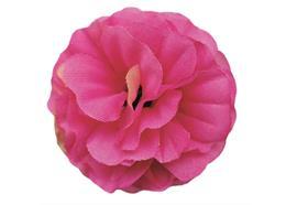 Fuchsia, Brilliant Begonias Forever Flowerz - Makes 30