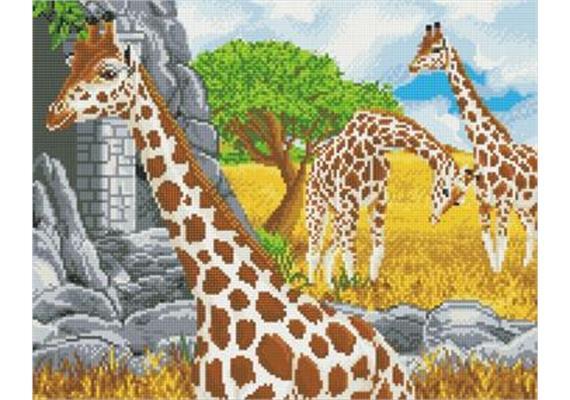 Grazing Giraffes, 40x50cm Crystal Art Kit