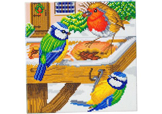 Hungry Birds, 30x30cm Crystal Art Kit