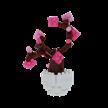 Kirschbaum / cherry tree | Bild 3