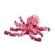 kleiner Tintenfisch /small octopus