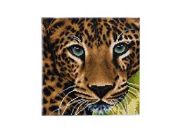 Leopard, 30x30cm Crystal Art Kit