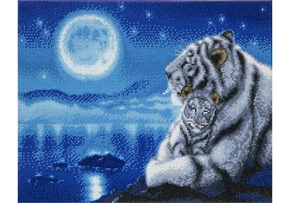 Lullaby White Tigers, 40x50cm Crystal Art Kit