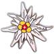 """Magnet Edelweiss, bedruckt mit """"Schweizer Kreuz"""", silber"""