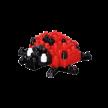 Marienkäfer / ladybird | Bild 3