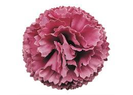 Mauve, Classic Carnations Forever Flowerz - Makes 30