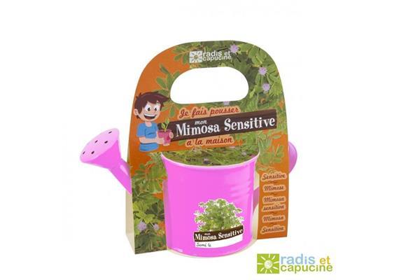 Mini Kit Griesskanne rosa Mimosa Pudica