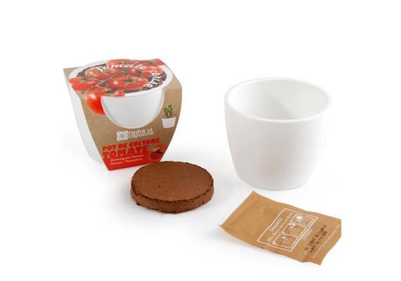 Mini Kit Keramik Kirschtomate bio 8cm