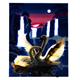 Moonlight Swans, 40x50cm LED Crystal Art Kit