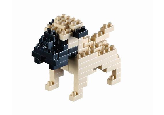 Mops / pug