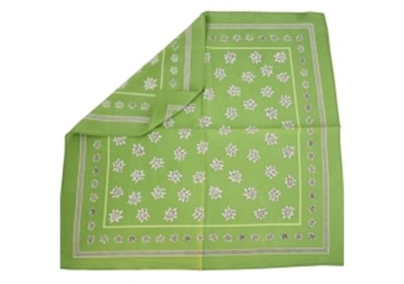 Nikki Seide, 55 x 55 cm Edelweiss grün