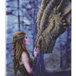 Once Upon A Time: Anne Stokes, 40x50cm Crystal Art Kit | Bild 2