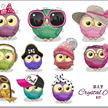 Owl Life, 21x27cm Crystal Art Sticker Set   Bild 2