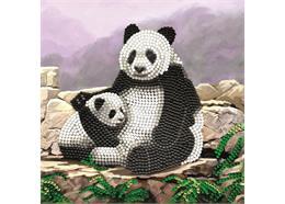 Panda mit Jungem, Karte 18x18cm Crystal Art