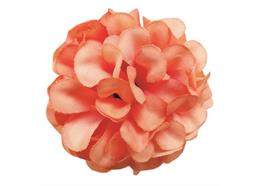 Peach, Cute Camelias Forever Flowerz - Makes 30