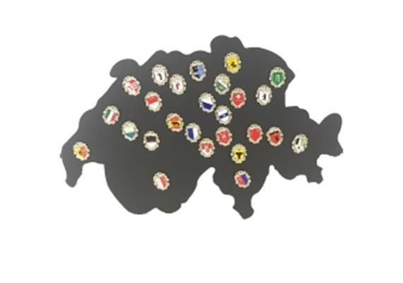 Pin Display à 26 Kantonswappen