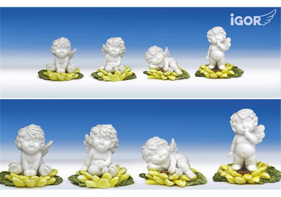 Poly-Engel ''Igor'' auf Sonnenblume weiss-coloriert sort. ø6-7 H5-8cm