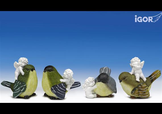 Poly-Engel ''Igor'' auf Vogel weiss-coloriert sort. H6-9/B9cm