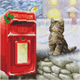 Postman Cat, 30x30cm Crystal Art Kit