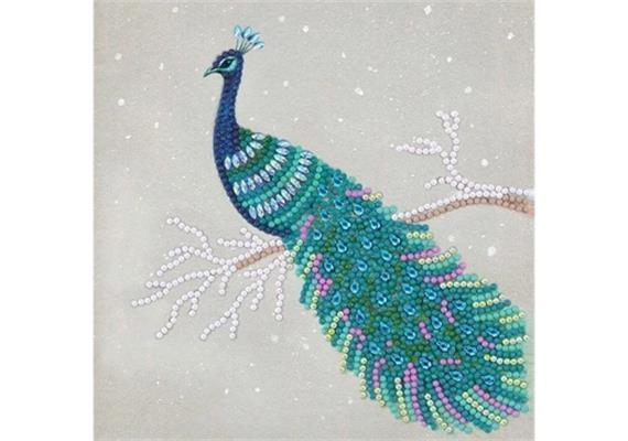 Pretty Peacock, 18x18cm Crystal Art Card