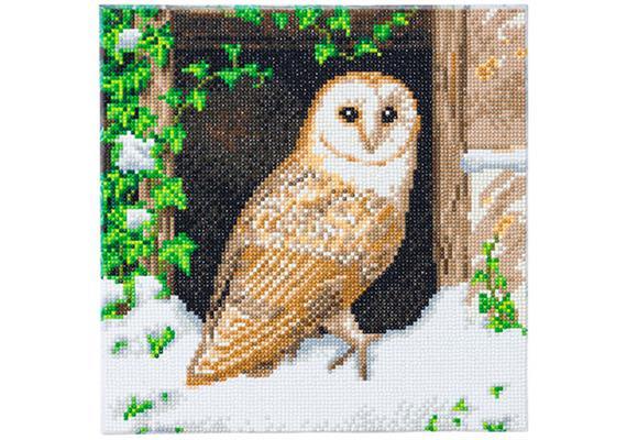 Snowy Owl, 30x30cm Crystal Art Kit