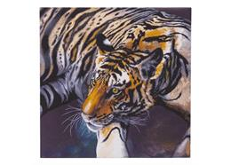 The Tiger, 70x70cm Crystal Art Kit