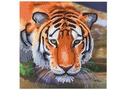 Tiger, Karte 18x18cm Crystal Art