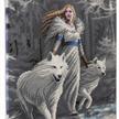 Winter Guardians: Anne Stokes, 40x50cm Crystal Art Kit | Bild 2
