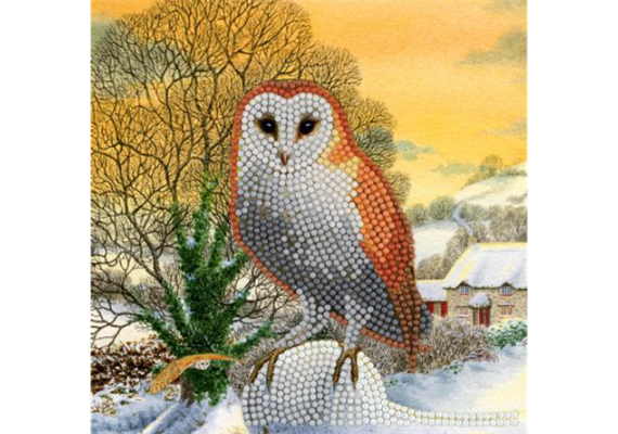Winter Owl, 18x18cm Crystal Art Card