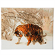 Winter Tigers, 40x50cm Crystal Art Kit