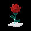 Blume / flower   Bild 3