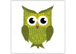 Green Owl, 9x9cm Crystal Art Motif