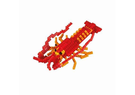 Hummer / lobster