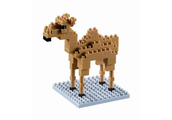 Kamel / Camel