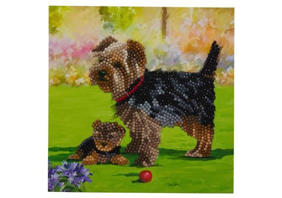 Les chiens, carte 18x18cm Crystal Art