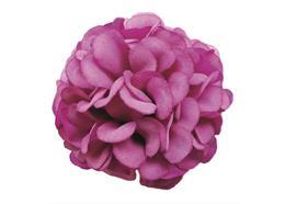 Magenta, Cute Camelias Forever Flowerz - Makes 30